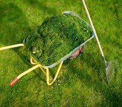 Grass Clippings Drop Off